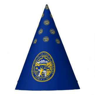 Nebraska Flag Party Hat