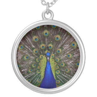 Necklace-Animals-The Peacock Silver Plated Necklace