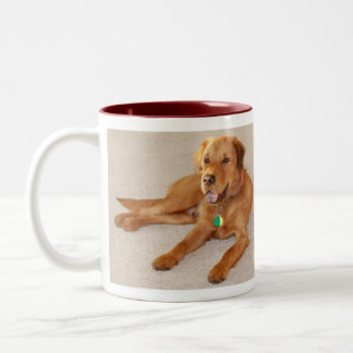 Neco Lying Down Two-Tone Coffee Mug