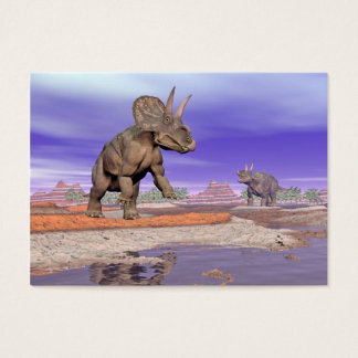 Nedoceratops/diceratops dinosaurs in nature business card
