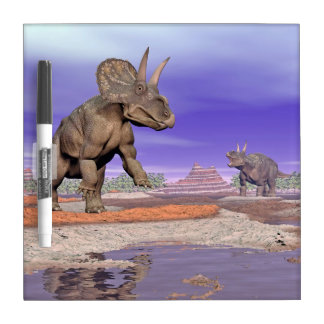 Nedoceratops/diceratops dinosaurs in nature dry erase board