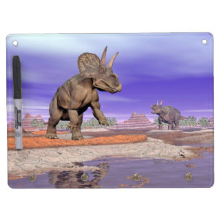 Nedoceratops/diceratops dinosaurs in nature dry erase board with keychain holder