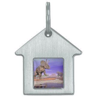 Nedoceratops/diceratops dinosaurs in nature pet ID tag