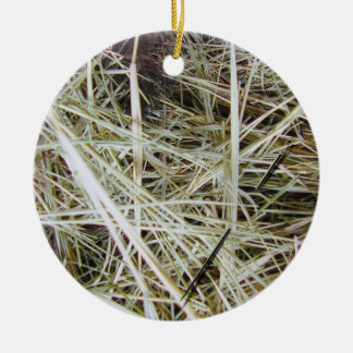 """needle in a haystack"" 2 SIDED ornament"