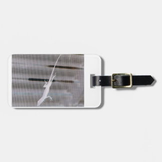 Negative image of a lizard on a window screen luggage tag