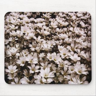Neige sur la montagne en fleur tapis de souris