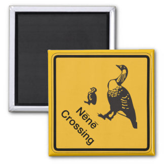 Nene Crossing, Traffic Warning Sign, Hawaii, USA Square Magnet