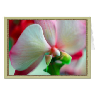 Neon Orchid Card