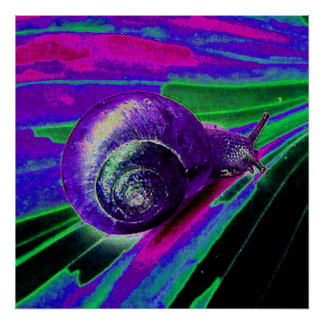 neon snail poster