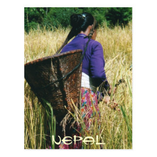 Nepal greetingcard postcard