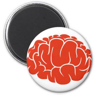 Nerd brain magnet