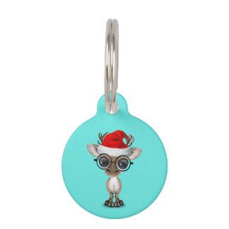 Nerdy Baby Reindeer Wearing a Santa Hat Pet Tag