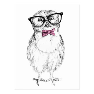 Nerdy Owlet small and smart   ink drawing Postcard