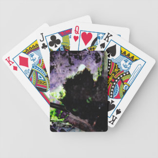 Nest • Egg • Kitty Bicycle Playing Cards