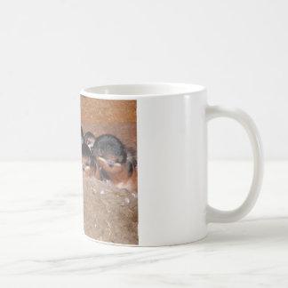 Nest full of baby barn swollows classic white coffee mug