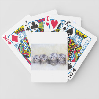 Nest with four young tabby cats in a row bicycle playing cards