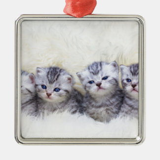 Nest with four young tabby cats in a row metal ornament