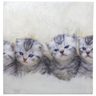 Nest with four young tabby cats in a row napkin