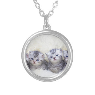 Nest with four young tabby cats in a row silver plated necklace