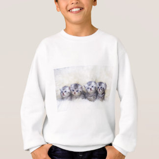 Nest with four young tabby cats in a row sweatshirt
