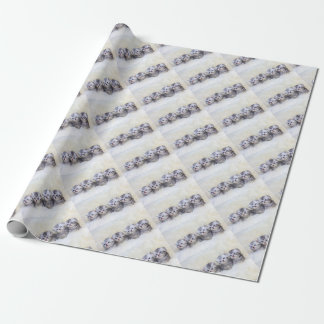 Nest with four young tabby cats in a row wrapping paper