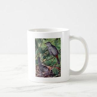 Nesting Gray Catbirds Classic White Coffee Mug