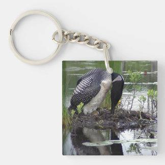 Nesting Loon keychain