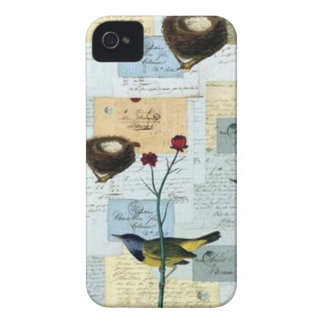 Nests and small birds iPhone 4 cover