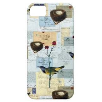Nests and small birds iPhone 5 cover