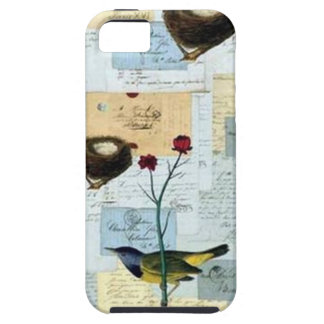 Nests and small birds iPhone 5 covers