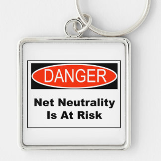 Net Neutrality Is At Risk Keychain