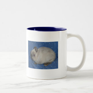 Netherland Dwarf Mug2 Two-Tone Coffee Mug