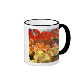 Netherlands aka Holland), Lisse. Keukenhof Ringer Coffee Mug