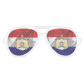 Netherlands flag aviator sunglasses