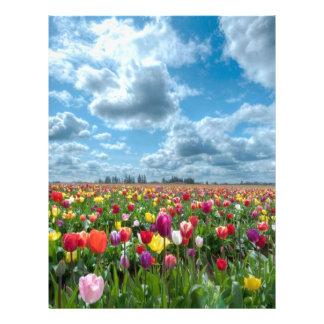 Netherlands Letterhead