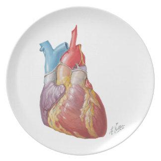 """Netter Heart """"Plate"""" Plates"""