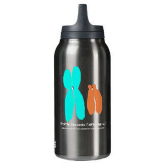 Nettie Stevens, XY Chromosomes Insulated Water Bottle