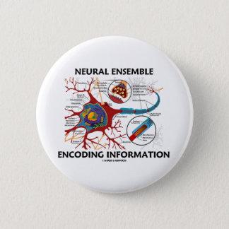 Neural Ensemble Encoding Information (Neuron) 2 Inch Round Button