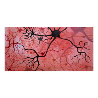 Neurons canvass poster
