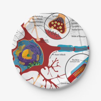 Neurons Nerve Healthy 7 Inch Paper Plate