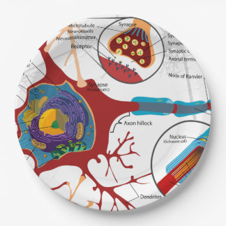 Neurons Nerve Healthy 9 Inch Paper Plate