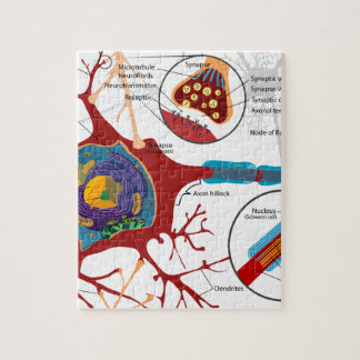 Neurons Nerve Style Jigsaw Puzzle