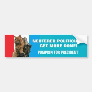 Neutered Politicians Get More Done Vote Pumpkin Bumper Sticker