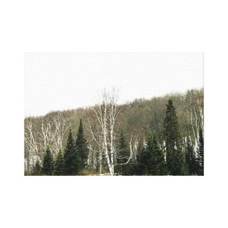 Neutral Canvas Wall Art - Winter Landscape