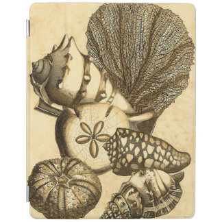 Neutral Shells and Coral Collection iPad Cover