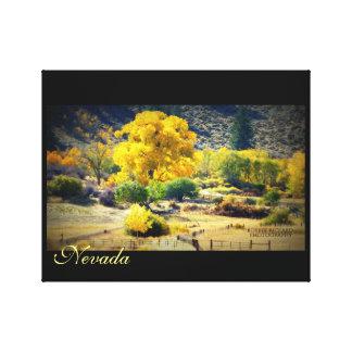 Nevada Gold Canvas Print