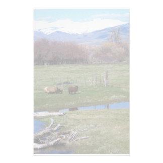 Nevada Ranch Landscape Stationery