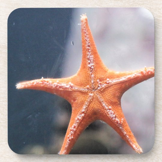 Never ask a star fish directions coaster