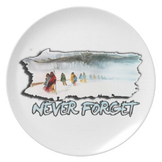 Never Forget the Trail of Tears Dinner Plates