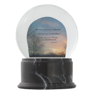 NEVER GIVE UO-MIKE PENCE SNOW GLOBE